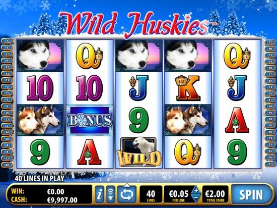 wild huskies slot machine